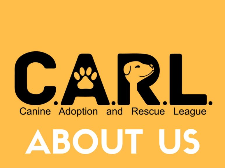 About Canine Adoption and Rescue League (C.A.R.L.)